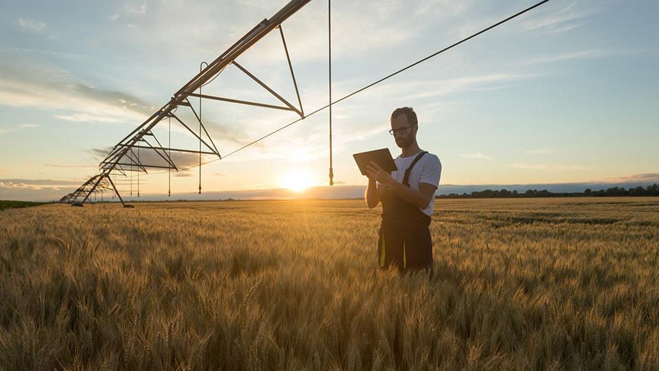 Dossier – L'assurance du risque agricole